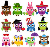 Cinco de Mayo Themed Collection of Owls. And Branches Royalty Free Stock Photography