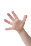 Cinco dedos imagen de archivo