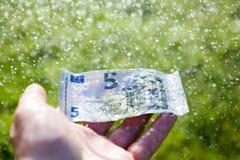 Cinco euros en una lluvia foto de archivo libre de regalías