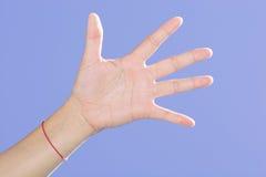Cinco fingeres Imagen de archivo libre de regalías