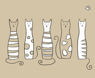 Cinco gatos Foto de archivo libre de regalías
