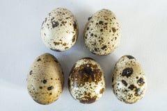 Cinco huevos de codornices Fotografía de archivo libre de regalías