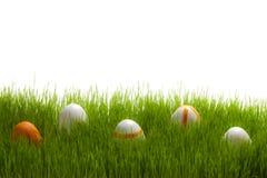 Cinco huevos de Pascua en hierba verde Fotos de archivo