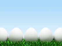 Cinco huevos en fila aislados en el fondo blanco Fotografía de archivo