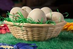 Cinco huevos en una cesta en hierba falsa verde imagen de archivo
