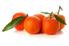 Cinco mandarinas maduras fotografía de archivo libre de regalías