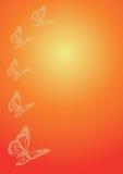 Cinco mariposas en fondo anaranjado Fotografía de archivo libre de regalías