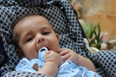 Cinco meses de bebê idoso que joga no pushchair Imagens de Stock Royalty Free