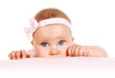 Cinco meses de retrato velho do bebê Imagem de Stock Royalty Free