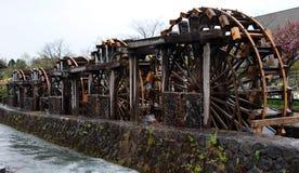 Cinco moinhos de vento, parque do Tulip de Tonami, Japão Imagem de Stock Royalty Free
