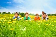 Cinco niños en el campo del diente de león Fotos de archivo libres de regalías
