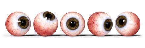 Cinco olhos humanos realísticos com a íris marrom, isolada na bandeira branca da ilustração do fundo 3d Fotos de Stock Royalty Free