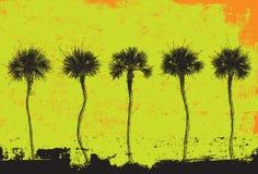 Cinco palmeiras Imagem de Stock Royalty Free
