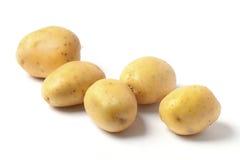Cinco patatas Fotos de archivo