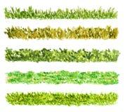 Cinco pedazos de la frontera de la hierba, acuarela pintada, aislador Fotografía de archivo libre de regalías