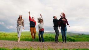 Cinco personas jovenes saltan y ríen en el fondo de un campo verde almacen de metraje de vídeo