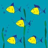 Cinco pescados subacuáticos Fotografía de archivo libre de regalías