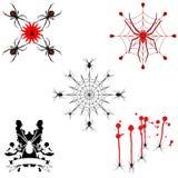 Cinco projetos da aranha Fotografia de Stock