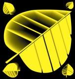Cinco siluetas de las hojas amarillas del árbol en un fondo negro Foto de archivo