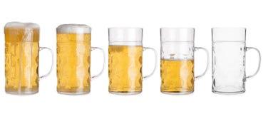 Cinco tazas de cristal con la cerveza clasificada de por completo a vacío Fotos de archivo libres de regalías