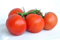 Cinco tomates Fotografia de Stock Royalty Free