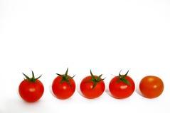 Cinco tomates de cereza Fotografía de archivo