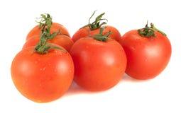 Cinco tomates frescos em um fundo branco Foto de Stock