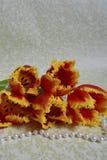 Cinco tulipanes y perlas anaranjados Fotos de archivo