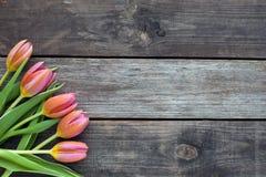 Cinco tulipas brilhantes em uma tabela de madeira Foto de Stock