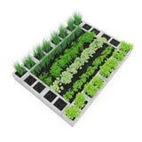 Cinder Block Garden auf einem Weiß Abbildung 3D Lizenzfreie Stockbilder