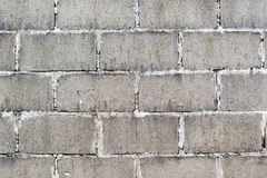 Cinder Block Wall Background Stock Image