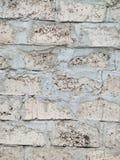 Cinder Blocks Laid in Bouw het Leggen stock afbeelding