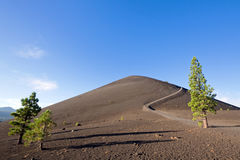 Cinder Cone Trail stock afbeelding