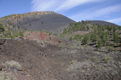 Cinder Cones of Sunset Crater Stock Photos