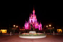Cinderella's Castle Royalty Free Stock Photo
