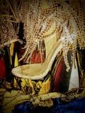 Cinderella& x27; s paza zdjęcia stock