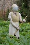 Cinderella Scarecrow. Arkivfoto