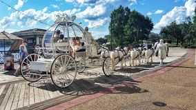 Cinderella wedding coach. Onlookers smile as a bride passes in a horse drawn carriage at Disney World Royalty Free Stock Photos