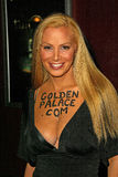 Cindy Margolis. At the VIP Screening of 'The Ring Two', Arclight Hollywood, Hollywood, CA 03-08-05 royalty free stock photo
