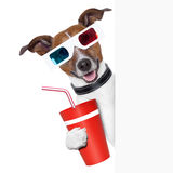 Cinema dog. 3d glasses dog with coke with side banner Stock Image