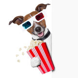 Cinema dog. 3d glasses dog with  popcorn beside a white banner Stock Photo
