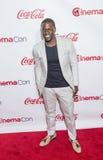 CinemaCon 2015 - 2015 Big Screen Achievement Awards Royalty Free Stock Photos