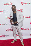 CinemaCon 2015 - 2015 Big Screen Achievement Awards Royalty Free Stock Image