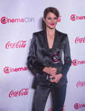 CinemaCon 2014 - os prêmios de mérito grandes da tela Imagem de Stock Royalty Free