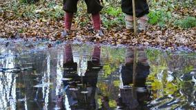 Cinemagraph - μεσαιωνικοί Βίκινγκ απεικόνισαν στο νερό απόθεμα βίντεο