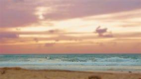 Cinemagraph del grupo de personas que practica surf que practican surf en el mar Mediterráneo en la puesta del sol en la playa de almacen de metraje de vídeo