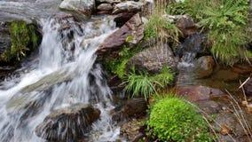 Cinemagraph do rio da montanha com as cachoeiras estáticas e no movimento, com vegetação luxúria video estoque