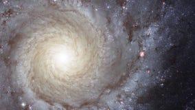 Cinemagraph för NASA 4K samling - storslagen spiralgalax för design smutsigare 74 stock video