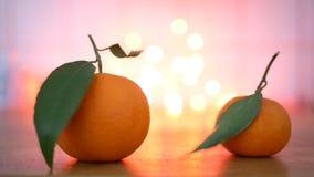 Cinemagraph - mandarines avec la feuille de flottement banque de vidéos