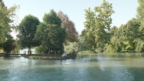 Cinemagraph river tree. Cinemagraph of a northern Italy flowing among the trees stock video footage